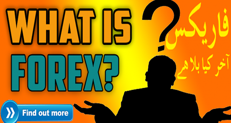 Information about forex trading delforex delphi xe