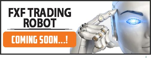 fxf-robot