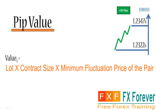 Forex 1 lot value