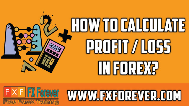Forex profit loss calculator